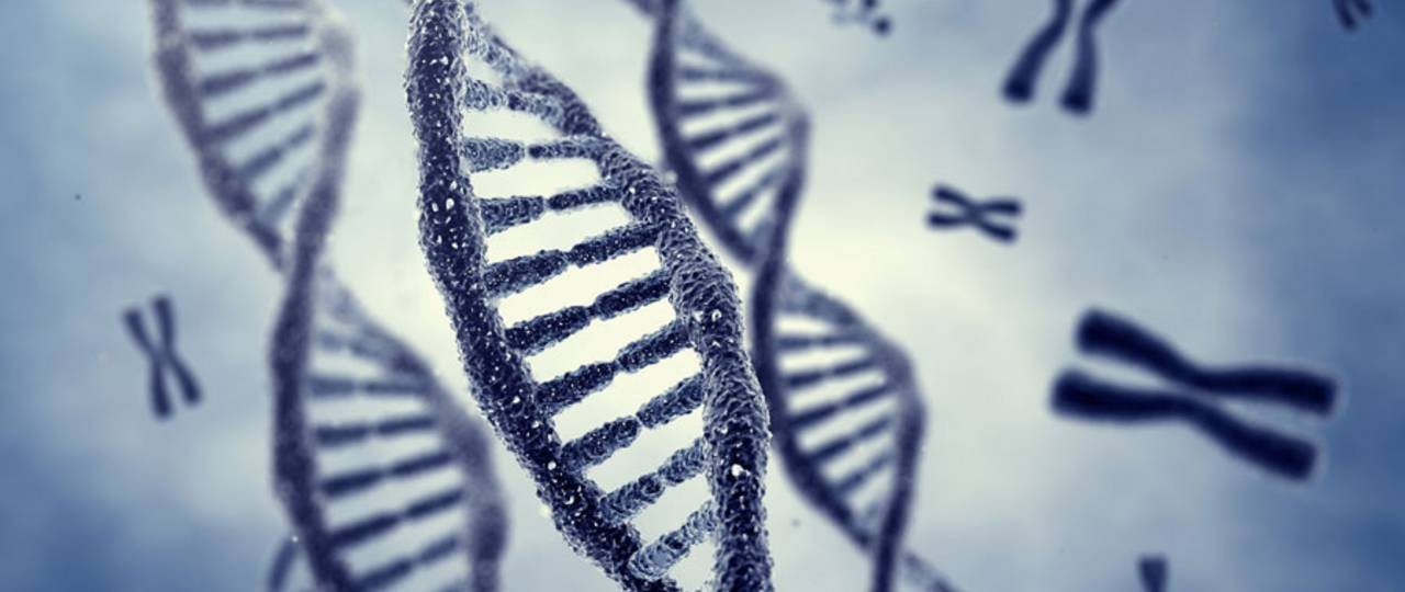 An ERC grant project is investigating chromosomes. (Image: nobeastsofierce / Fotolia)