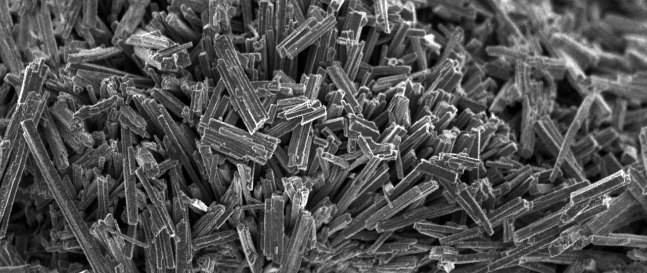 A picture of a catalyst, highly magnified, under a microscope