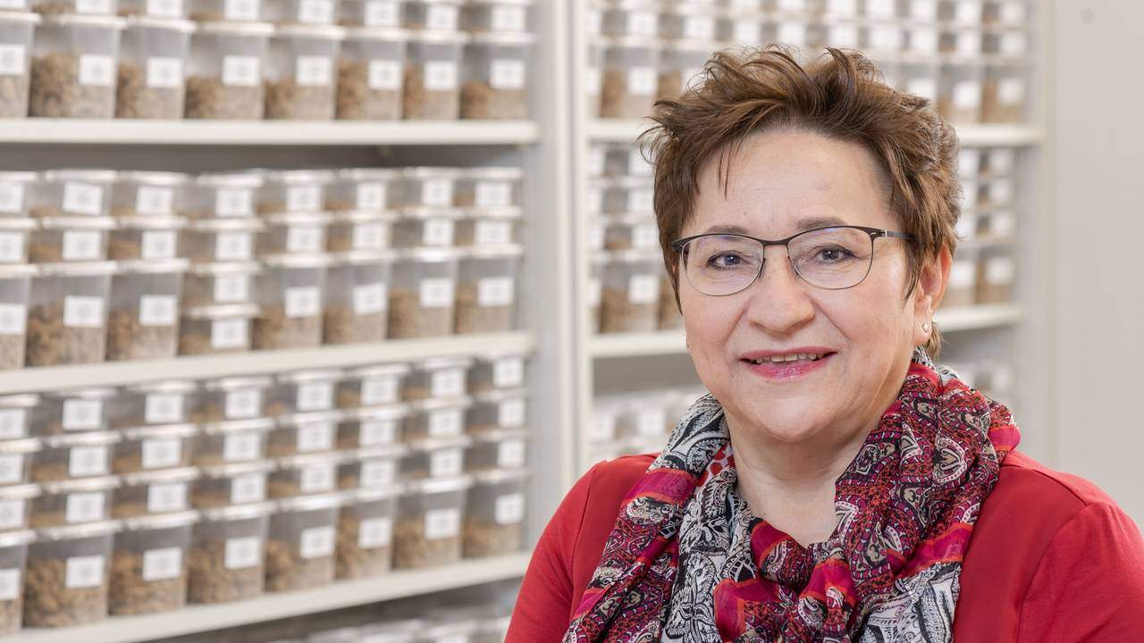 Ingrid Kögel-Knabner has received the German Environmental Award for her soil research.