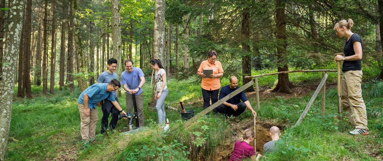 Prof. Koegel-Knabner with students and doctoral candidates taking soil samples in the Freising forest area.