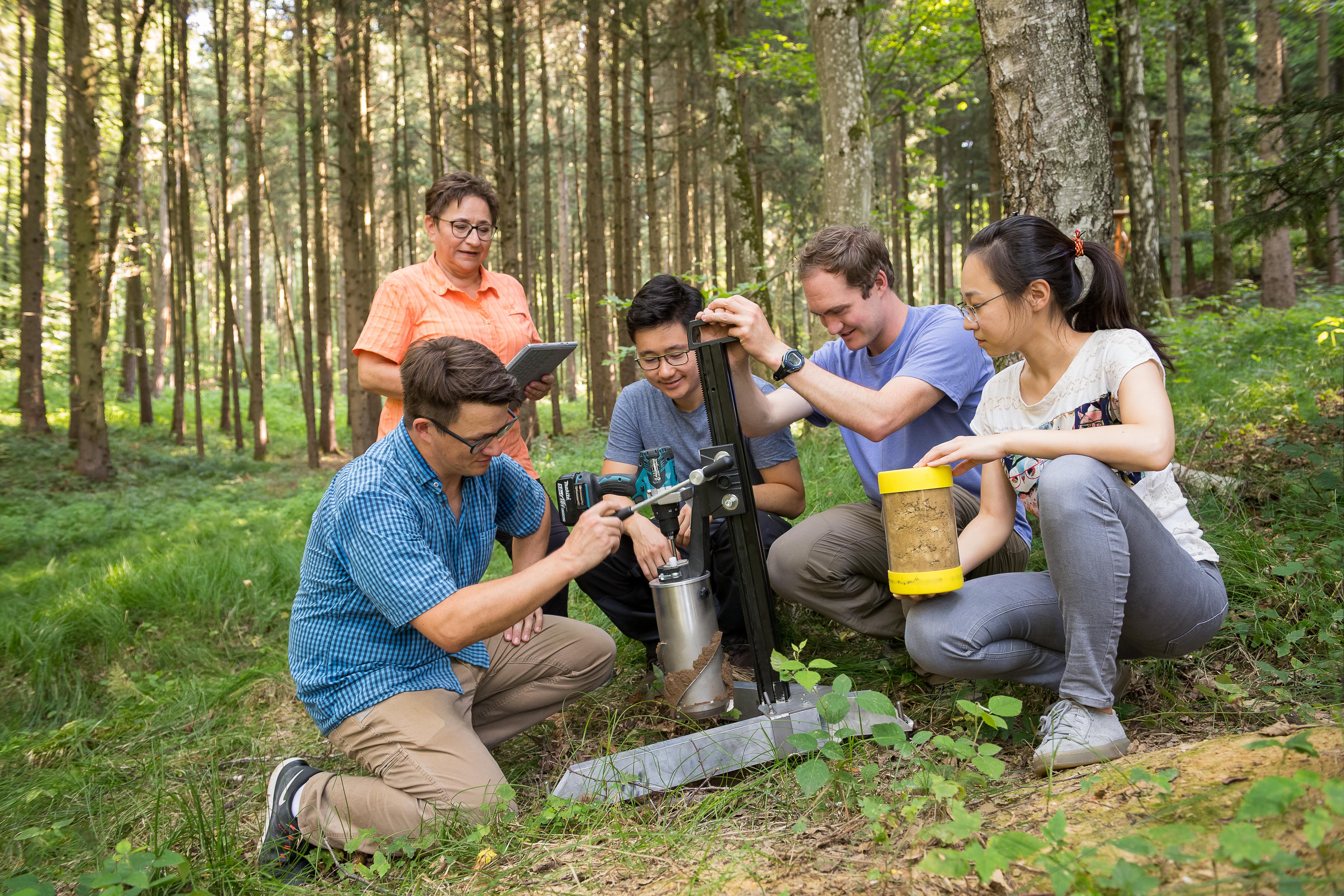 Ingrid Kögel-Knabner und ihre Mitarbeiterinnen und Mitarbeiter nehmen Bodenproben im Wald.