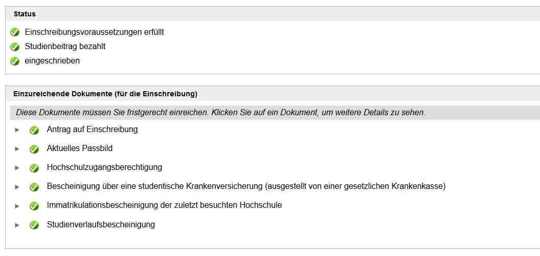 Screenshot TUMonline: Status Immatrikulation